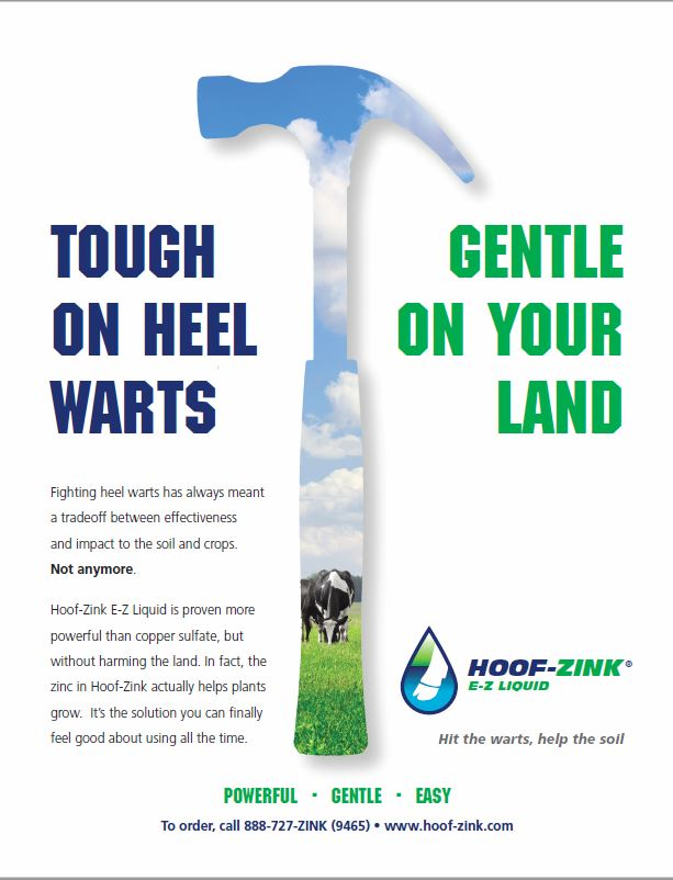 Hoof-Zink July 2016 Hoards Dairyman ad about how Hoof-Zink Kills the bacteria common to hairy heel warts and is also safe for disposal on farm land for sustainable agriculture..