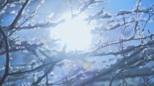 Sun glistening through snow covered branches | Hoof-Zink prevent Digital Dermatitis