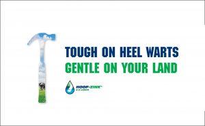 Hoof Zink is tough on Heel Warts, Gentle on the land